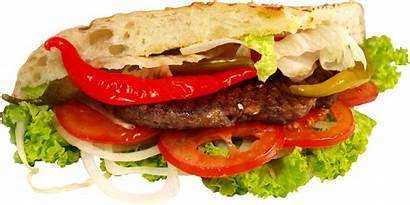 Sandwich Transparent Burger Pluspng Pngimg Freepngimg Featured
