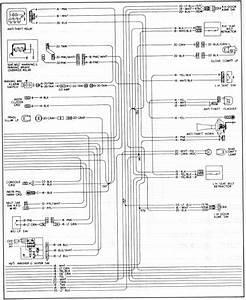 Wiring Diagram Seat Belt Reminder