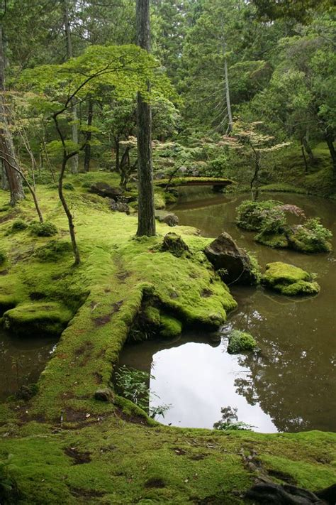 moss garden japan saihō ji buddhist temple in matsuo nishikyō ward kyoto japan i just might take up buddhism
