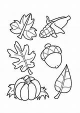 Coloring Acorns Leaves Autumn Pages Printable Print Leaf Sheets Parentune Child Assignment sketch template