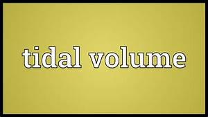 Tidal Volume Meaning