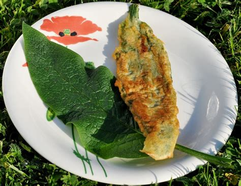 cuisine sauvage couplan 161 filets consoude 1 ok jpg