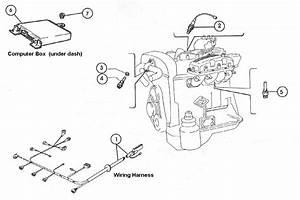Fiat 124 Inj  System Wiring  Sensors  U0026 Computer