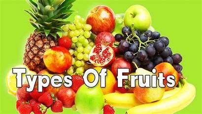 Fruits Types Different Kindergarten Babies Learn
