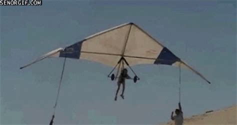 Hang Glider GIF - Find & Share on GIPHY