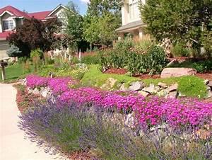 Welche Blumen Blühen Im Oktober : pflanzen f r steingarten welche eignen sich am besten ~ Bigdaddyawards.com Haus und Dekorationen