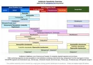Antibiotic Spectrum Coverage