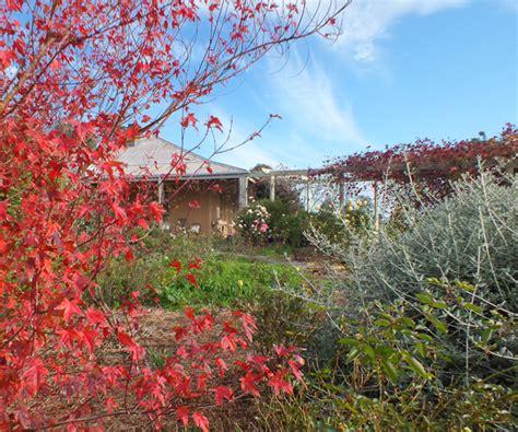 olive garden silverdale olive garden silverdale closest olive garden to sequim