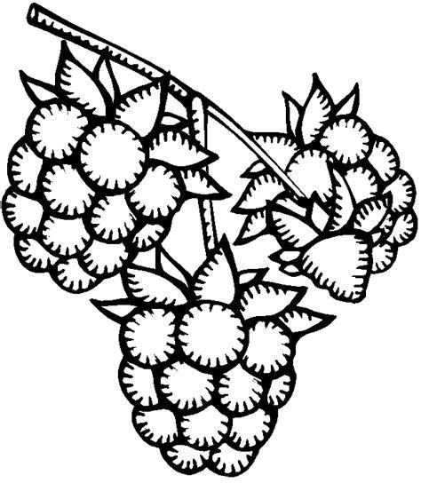 raspberry bush clipart black and white menta m 225 s chocolate recursos y actividades para