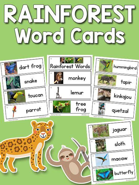 rainforest word cards prekinders