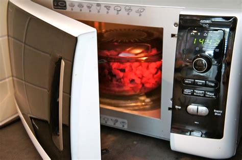 cuisiner au micro onde cuisiner au micro ondes pour chien baikasblog