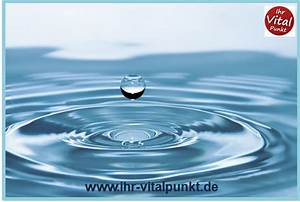 Stoffwechsel Berechnen : stoffwechsel anregen durch wasser heilpraktikerin spandau ~ Themetempest.com Abrechnung