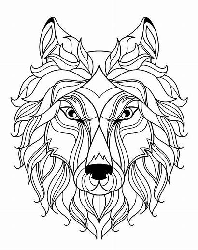 Wolf Coloring Pages Children Justcolor