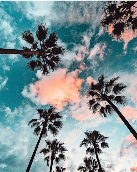 Summer Instagram Wallpapers by Pin By Reyes On Wallpaper In 2019