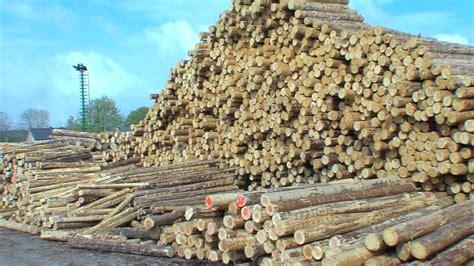 piquet bois cloture huet bois producteur et fabricant de bois ronds piquet et cl 244 ture poteaux edf nfc 67100