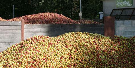 Paradis Du Fruit Bordeaux 1107 by Calvados De La Pomme Au Paradis Le Figaro Vin