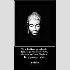 Die Besten 25+ Buddha Weisheiten Ideen Auf Pinterest