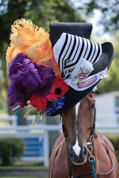 filly fascinator ladies day hat   horse zimbio