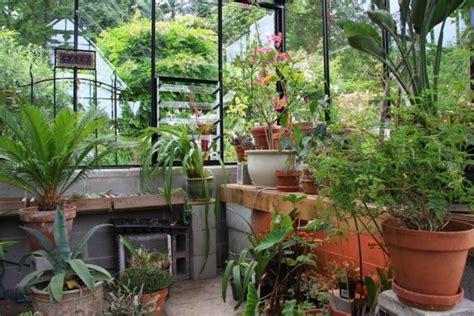 soigner les orchidees en pot les plantes dans la v 233 randa entretenez et embellissez votre jardin avec mr bricolage