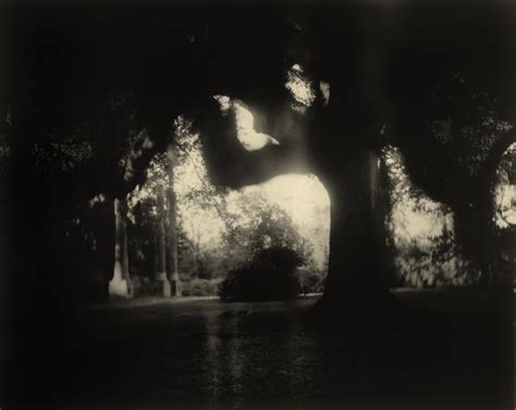 Sally Mann  Artists  Edwynn Houk Gallery