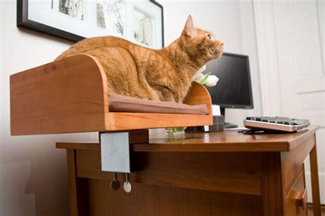 kit  box desktop cat bed  green head