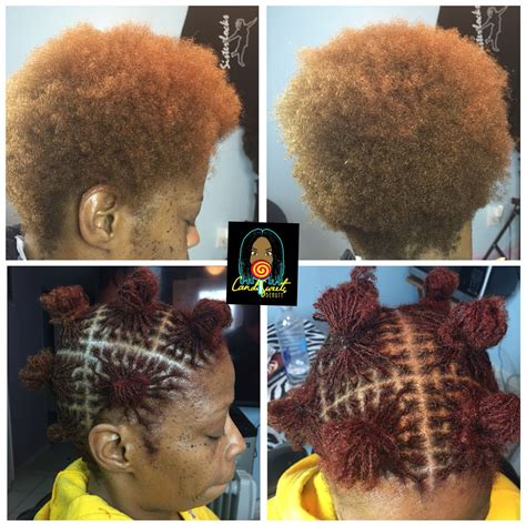 color  sisterlocks installation    licensed