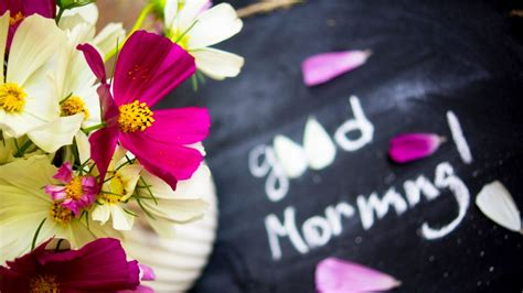 30 Beautiful Good Morning Love Images with Flowers