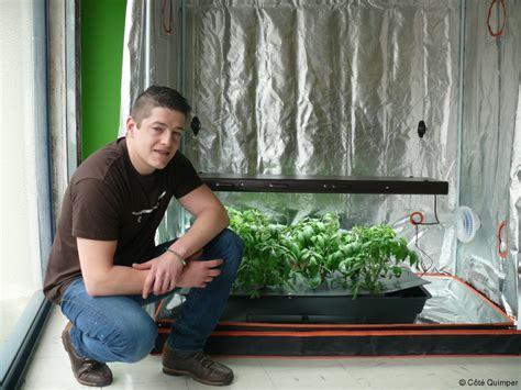 mini chambre de culture quimper tout pour jardiner en intérieur article côté