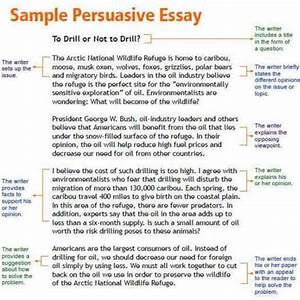 My Country Sri Lanka Essay English Argument Essay Introduction Paragraph What Is Thesis Statement In Essay also What Is A Thesis Statement For An Essay Argument Essay Introduction Business Letters Service Argumentative  Research Paper Essay Format