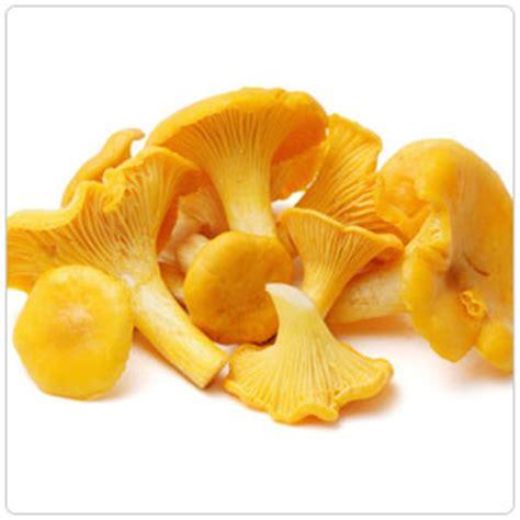 chanterelle mushroom produce express of sacramento