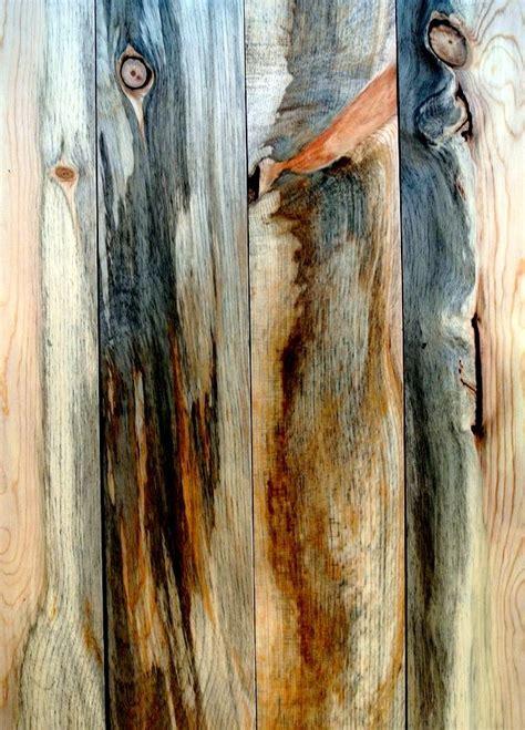 sustainable lumber co beetle kill pine beetle kill blue pine pin