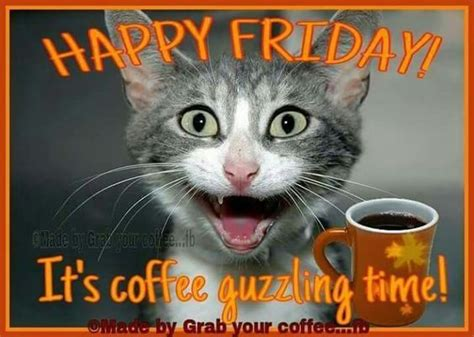 These friday images with quotes will be perfect for any mood you have! Good Morning Happy Friday Funny Gif - GoodMorningMessage.Com