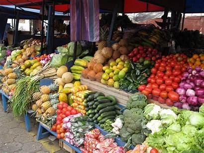 Market Otavalo Ecuador Jamaican Jamaica Ground Provision