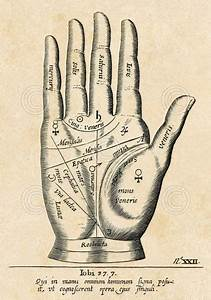 Palmistry  Palm Diagram By Vintage Reproduction Tarot Reading Print Poster 19x13