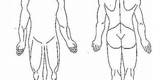 Human Body Diagram Blank