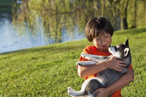 involve kids  training  family dog
