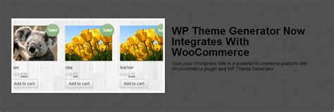 wordpress theme generator create unlimited wordpress