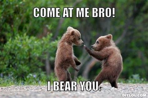 Bear Meme Generator - bear memes image memes at relatably com