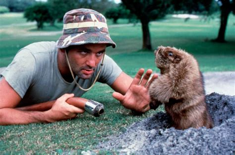 the greatest of bill murray s has been