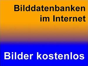Kostenlose Bilder Online Bilddatenbank Fr Fotos Zum