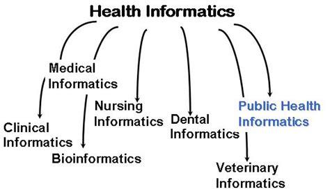 Public Health Informatics Careers What Are My Options. Saving Account Promotions Myeloid Stem Cells. Massage Envy Mission Viejo Diet Juice Recipes. Photography Schools In Wisconsin. Workers Compensation Appeals Board Los Angeles. Tech Companies In Denver Client File Transfer. Maximo Integration Framework. Applicant Tracking Database Dog Stuffy Nose. Cook County Property Tax Search