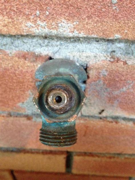 plumbing       leaking outdoor