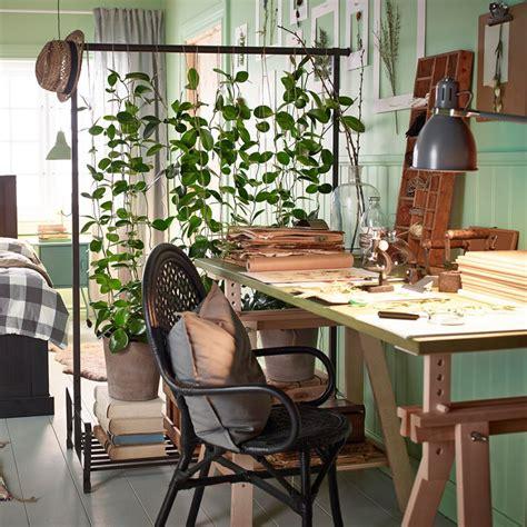 le bureau verte jungle plante verte et mur vert couleur pastel