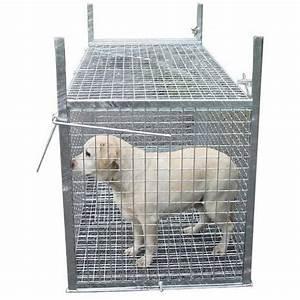 Trappe Pour Chat : trappe pi ge capture pour chien errant morin fabricant ~ Dode.kayakingforconservation.com Idées de Décoration