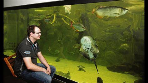 inhalt von  badewannen riesiges privates aquarium