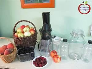 Jus De Fruit Maison Avec Blender : faire un jus de fruits frais maison ma passion du verger ~ Medecine-chirurgie-esthetiques.com Avis de Voitures