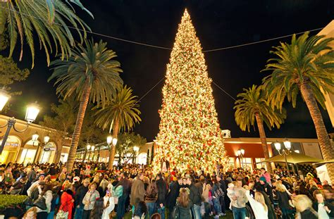 christmas trees irvine nightly tree lighting moment orange county zest