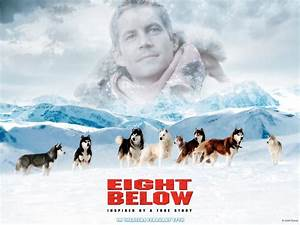 30 Best Images About Eight Belowmy Favorite Movie On