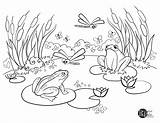 Coloring Pages Parks Pond Frog Recreation Sheet Easy Government Carroll County Maryland sketch template