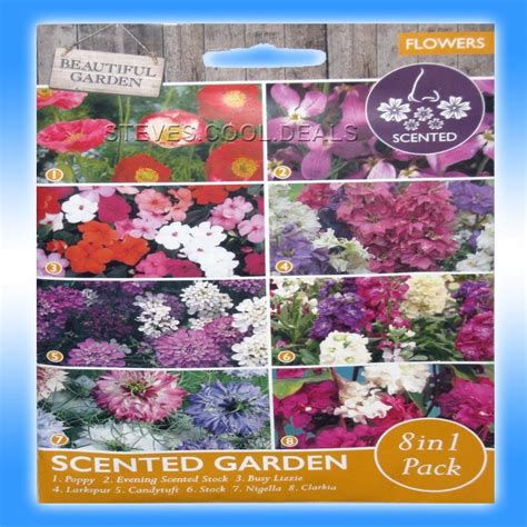 cottage garden seeds scented flowers patio tubs plants